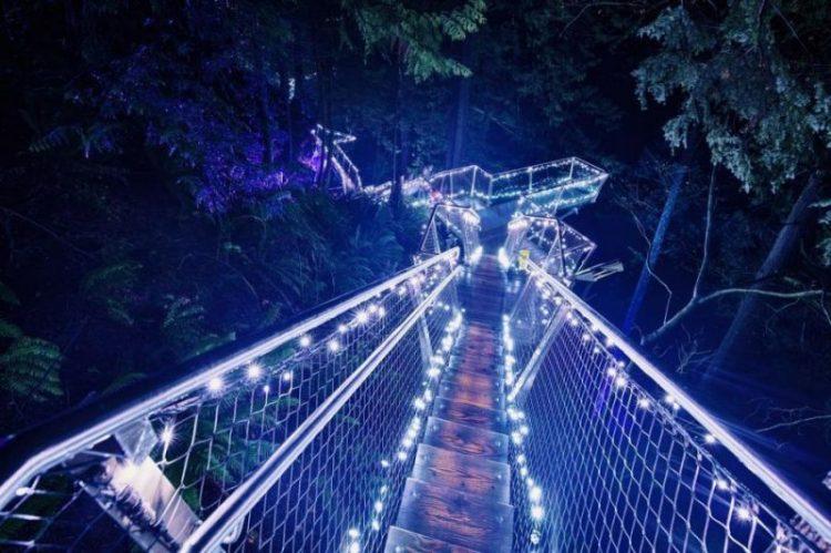Виртуальное путешествие: уникальные пешеходные мосты