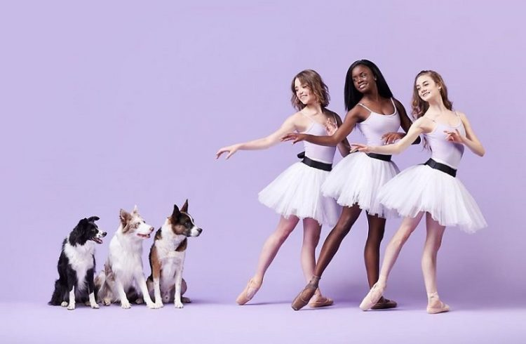 Dancers Dogs